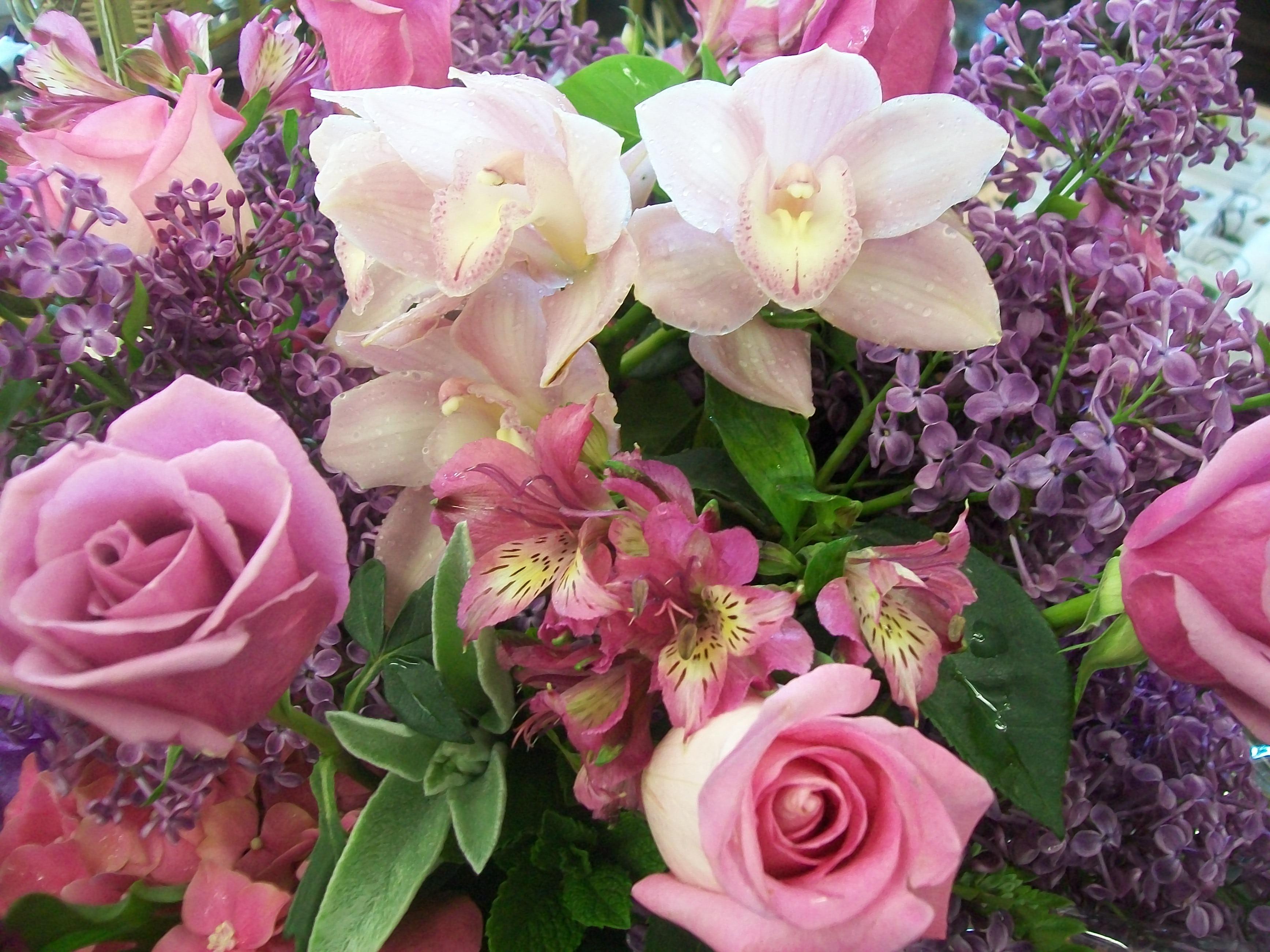 Цветок с французского